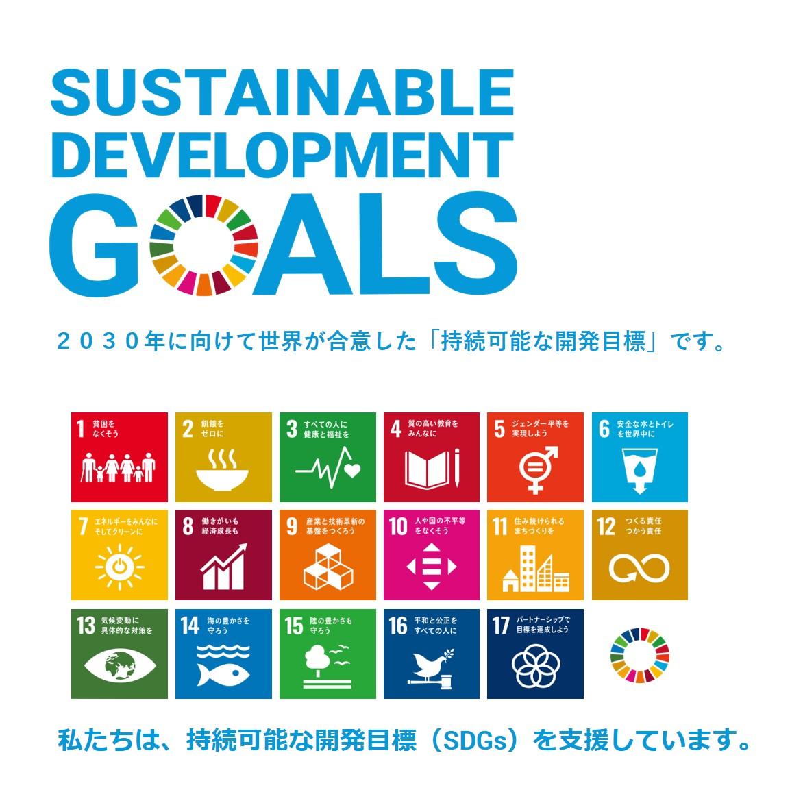 持続 可能 な 開発 目標 SDGs(持続可能な開発目標)17の目標&169ターゲット個別解説